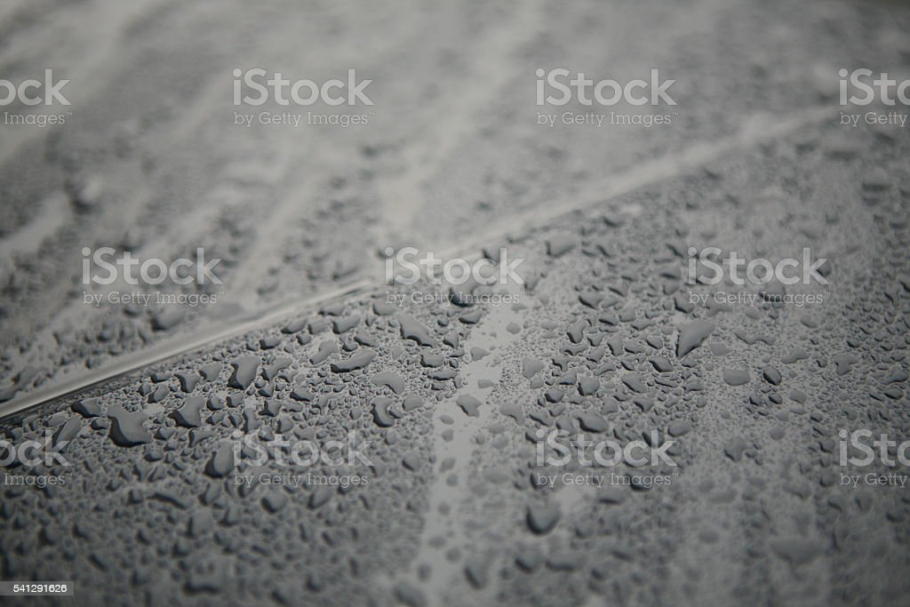 Rain drops background stock photo