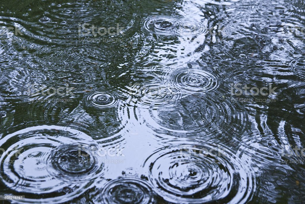 rain drops rippling in a puddle stock photo