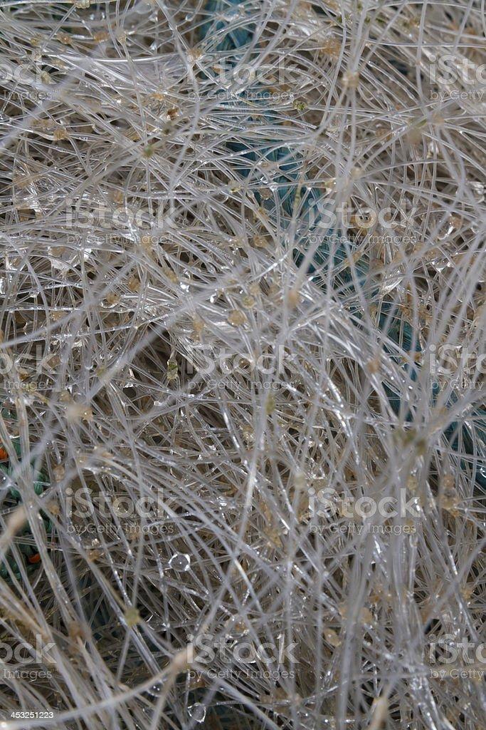 Rain drops suspended in nylon fishing net, macro stock photo