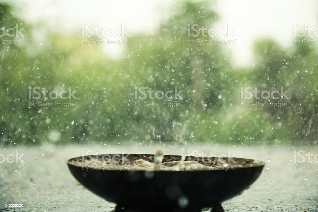 Rain falling into empty bowl stock photo