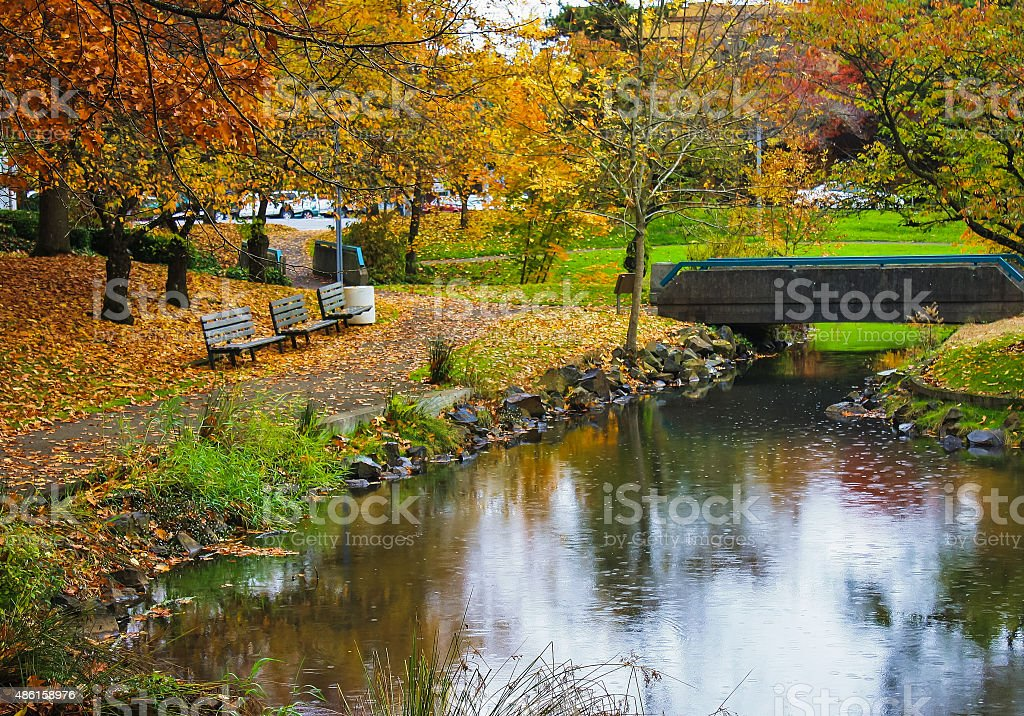 Rain in autumn city park stock photo