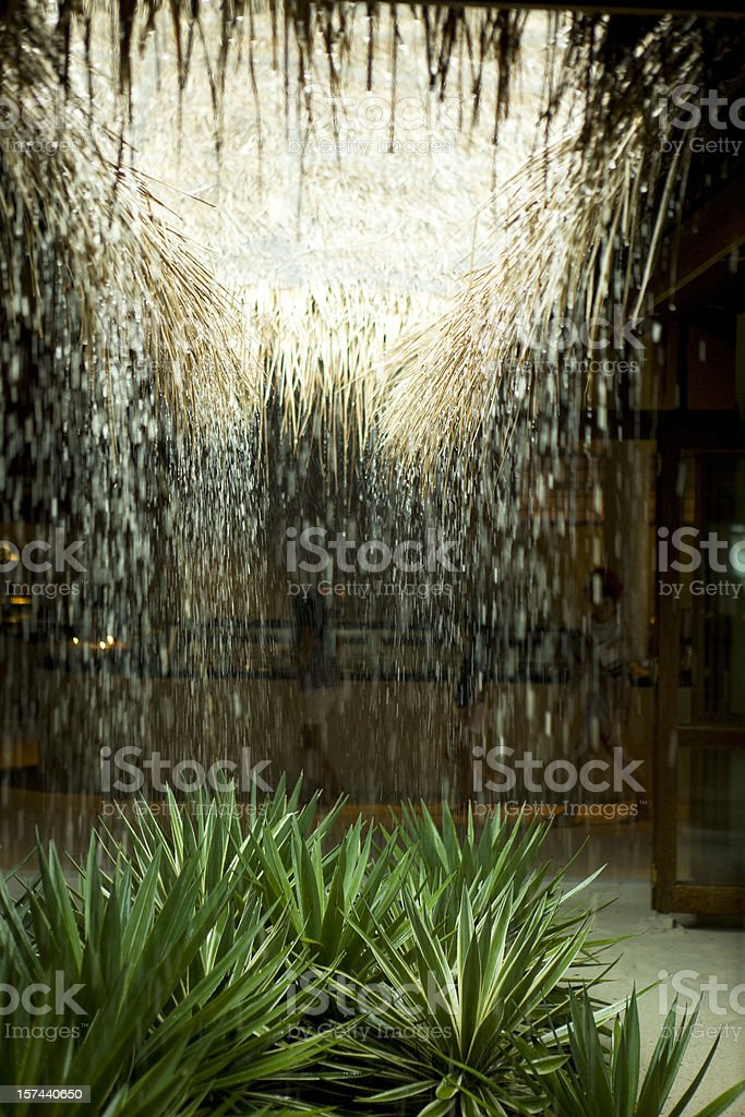 Rain royalty-free stock photo
