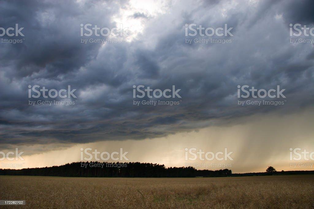 Rain Shower royalty-free stock photo