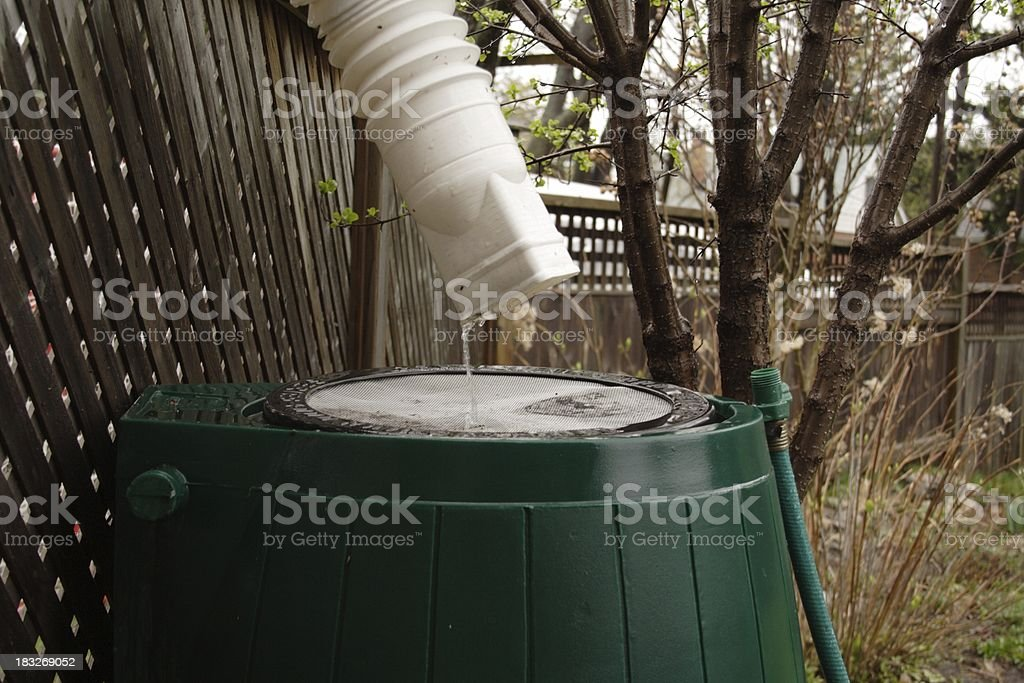 Rainbarrel In Action stock photo
