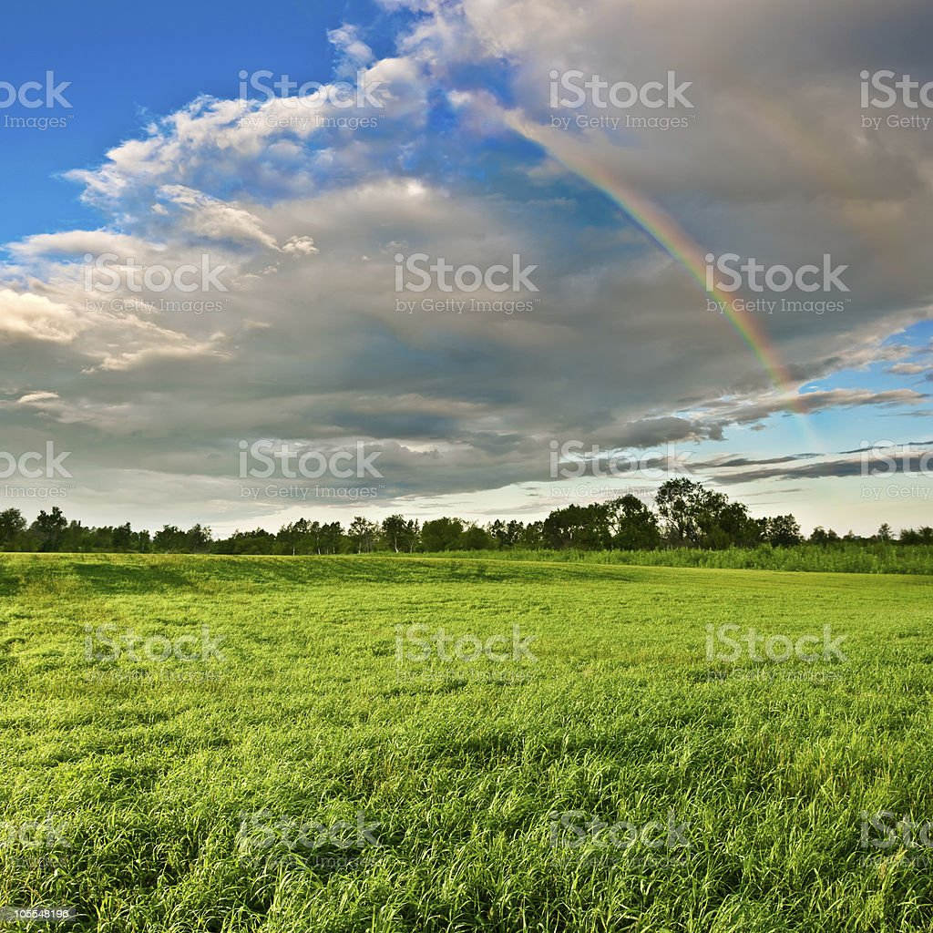 rainbow above the forest stock photo