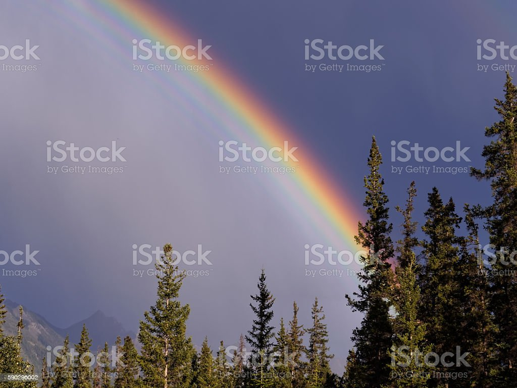 Rainbow Against a Moody, Stormy Sky & Forest stock photo