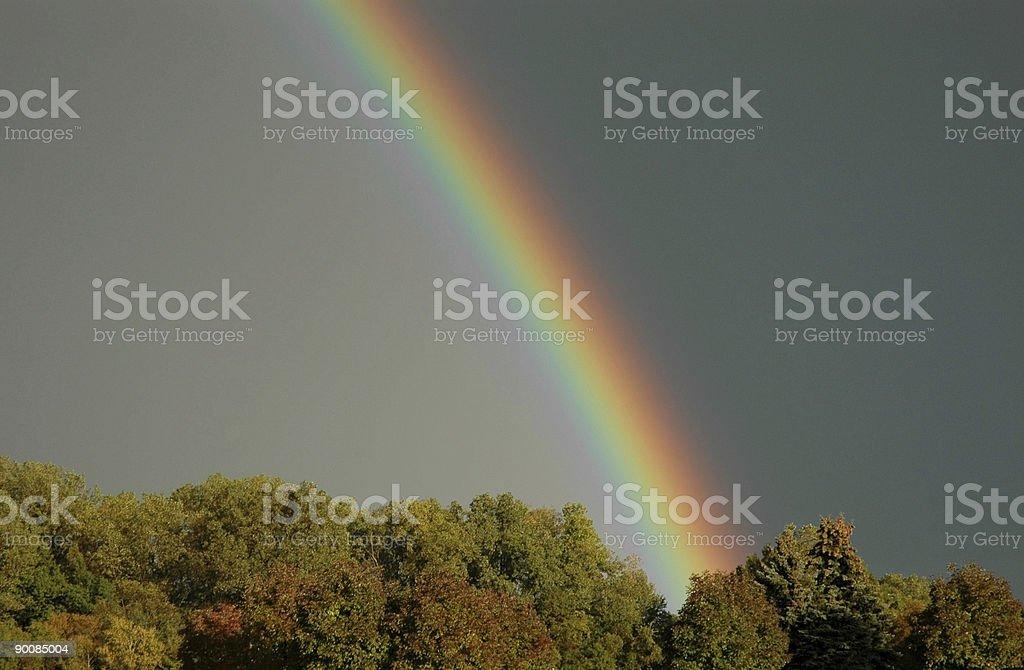 Rainbow и деревьями Стоковые фото Стоковая фотография