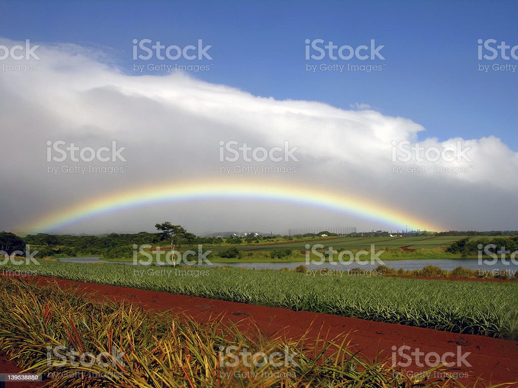 Rainbow at Dole Plantation stock photo
