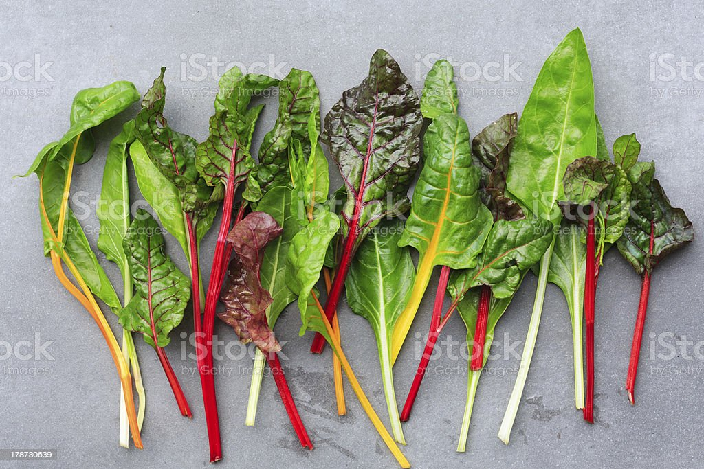 Rainbow Chard leaves stock photo