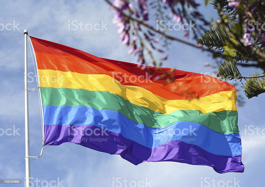 Rainbow flag in spring royalty-free stock photo