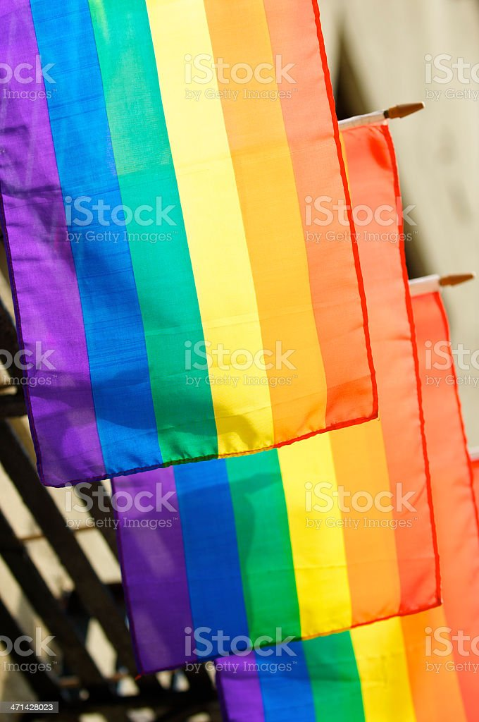 Rainbow Flags Hang in Row Bright Sunlight royalty-free stock photo