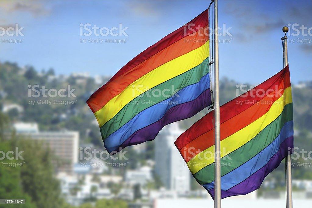 Rainbow flags stock photo