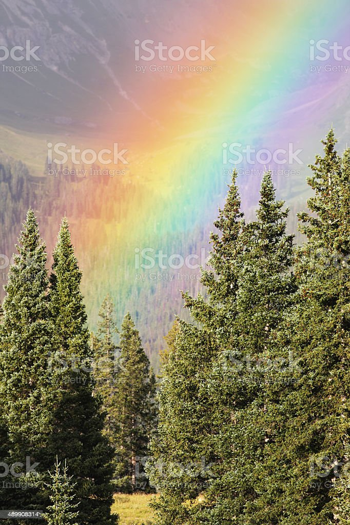 Rainbow Forest Mountain Weather stock photo