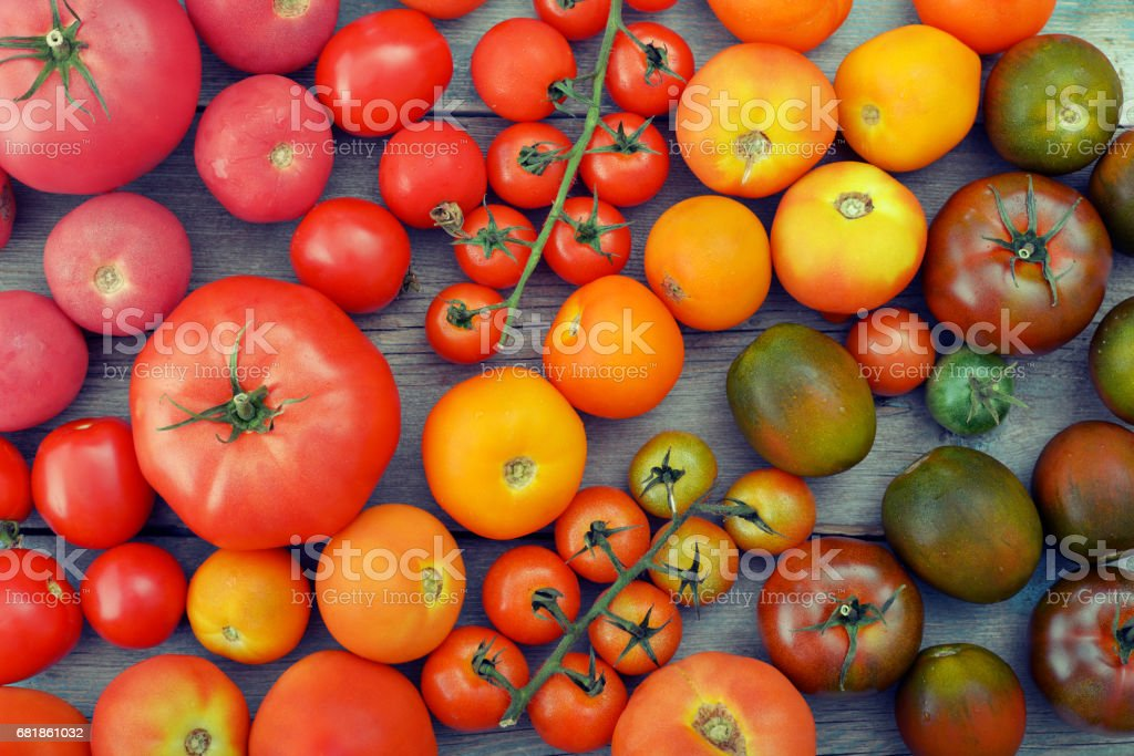 Rainbow from tomato. stock photo
