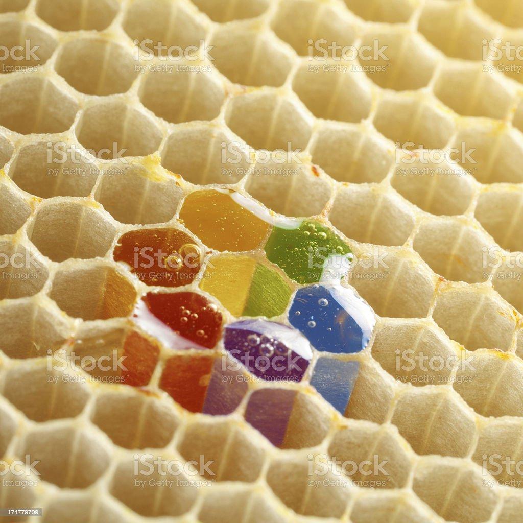 Rainbow honey royalty-free stock photo