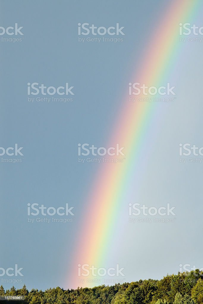 Rainbow in a clear blue sky under the trees royalty-free stock photo