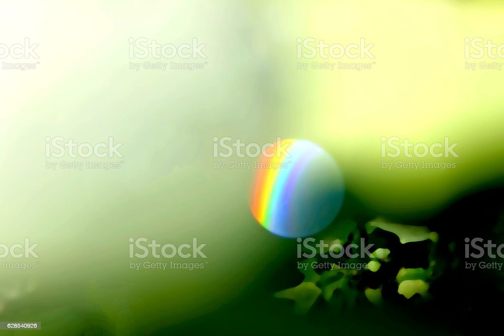 Rainbow in Water Droplet Atop Tuliptree Leaf stock photo