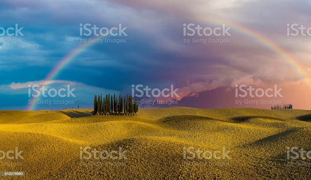 Rainbow over a field  after the evening rainstorm stock photo