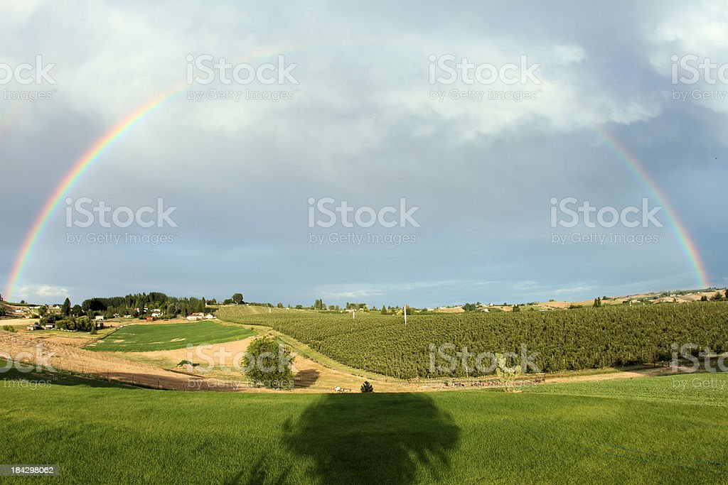 Rainbow over orchards stock photo
