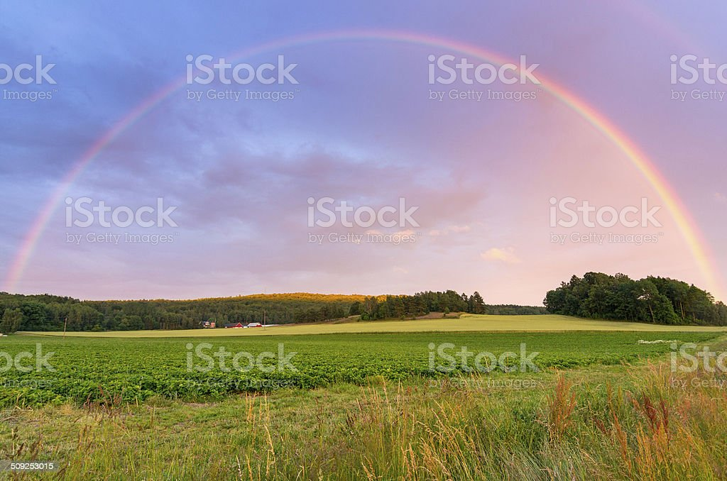 Rainbow over Swedish field stock photo
