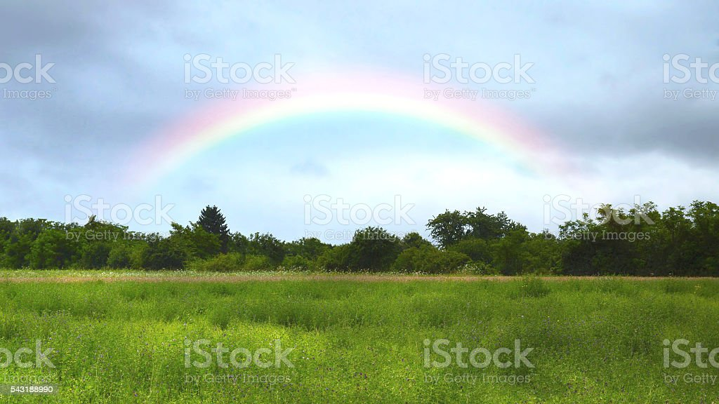 Rainbow over the meadow stock photo