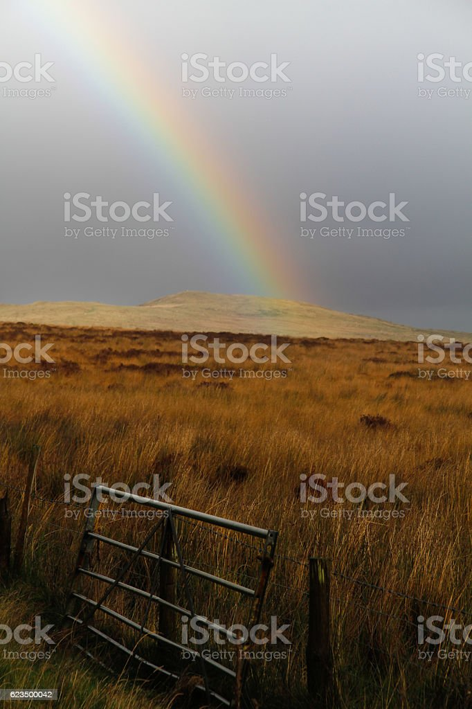 Rainbow (Tęcza)  zbiór zdjęć royalty-free