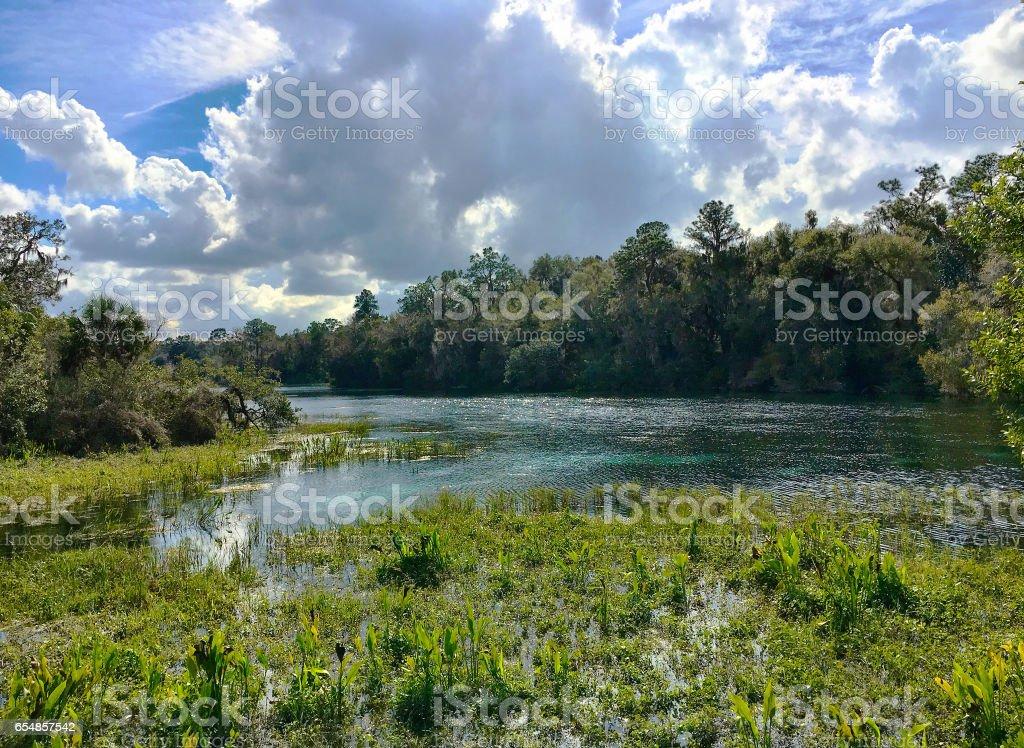 Rainbow Springs stock photo