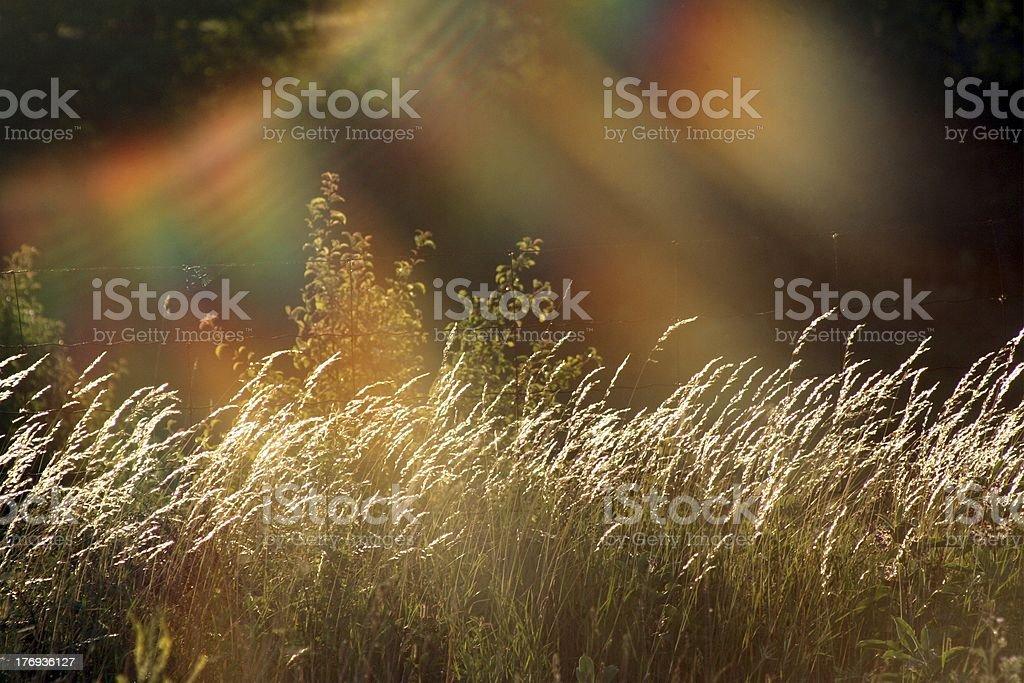 Rainbow Sun stock photo