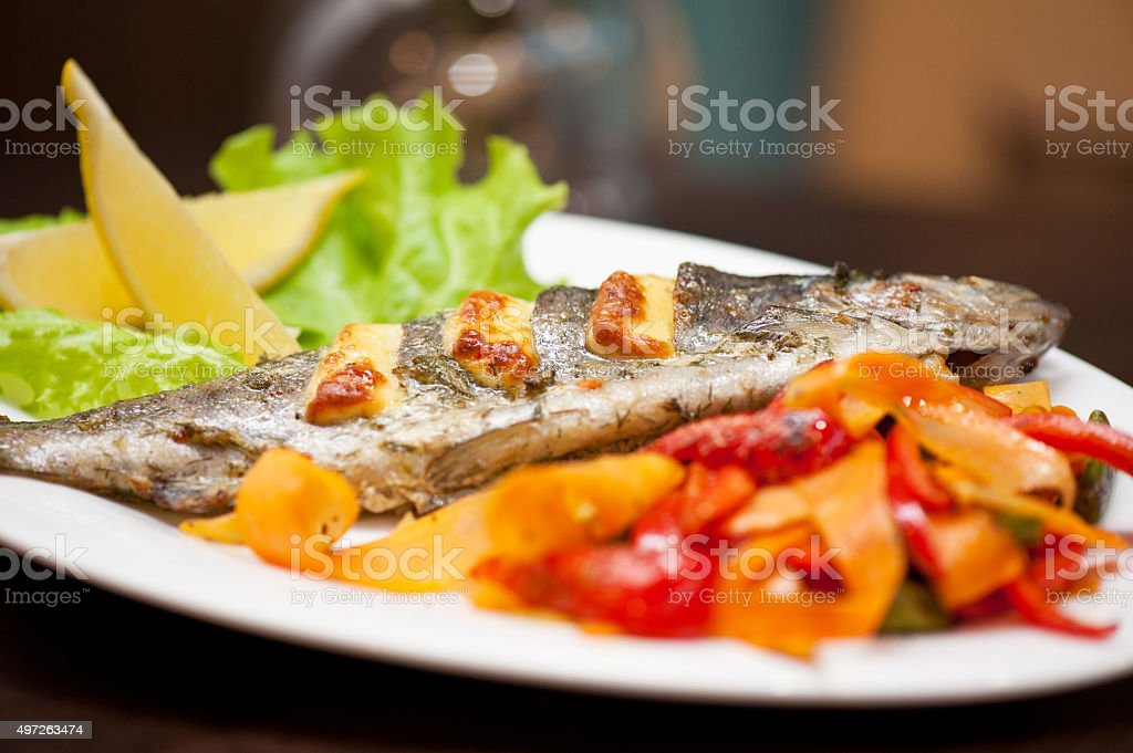 rainbow trout fish stock photo