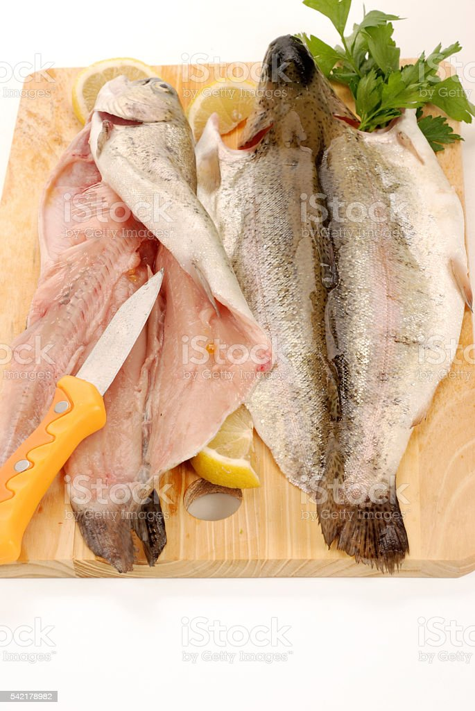 Rainbow trout lake fish stock photo