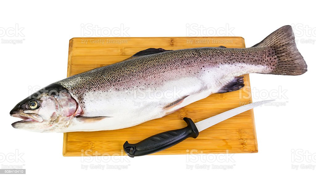 Rainbow trout meal ready for cleaning stock photo