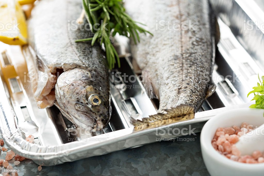 Rainbow trout ready to be grilled stock photo
