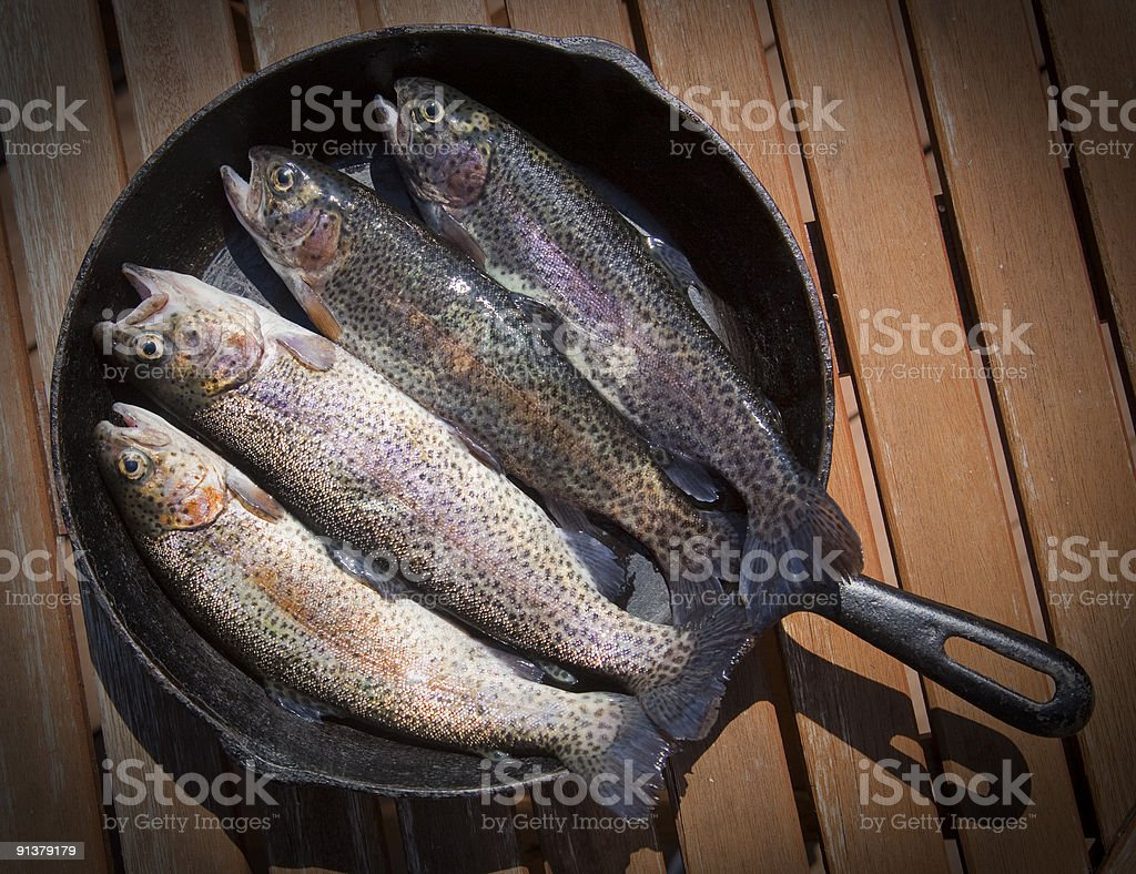 Rainbow Trout Waiting To Be Cooked royalty-free stock photo