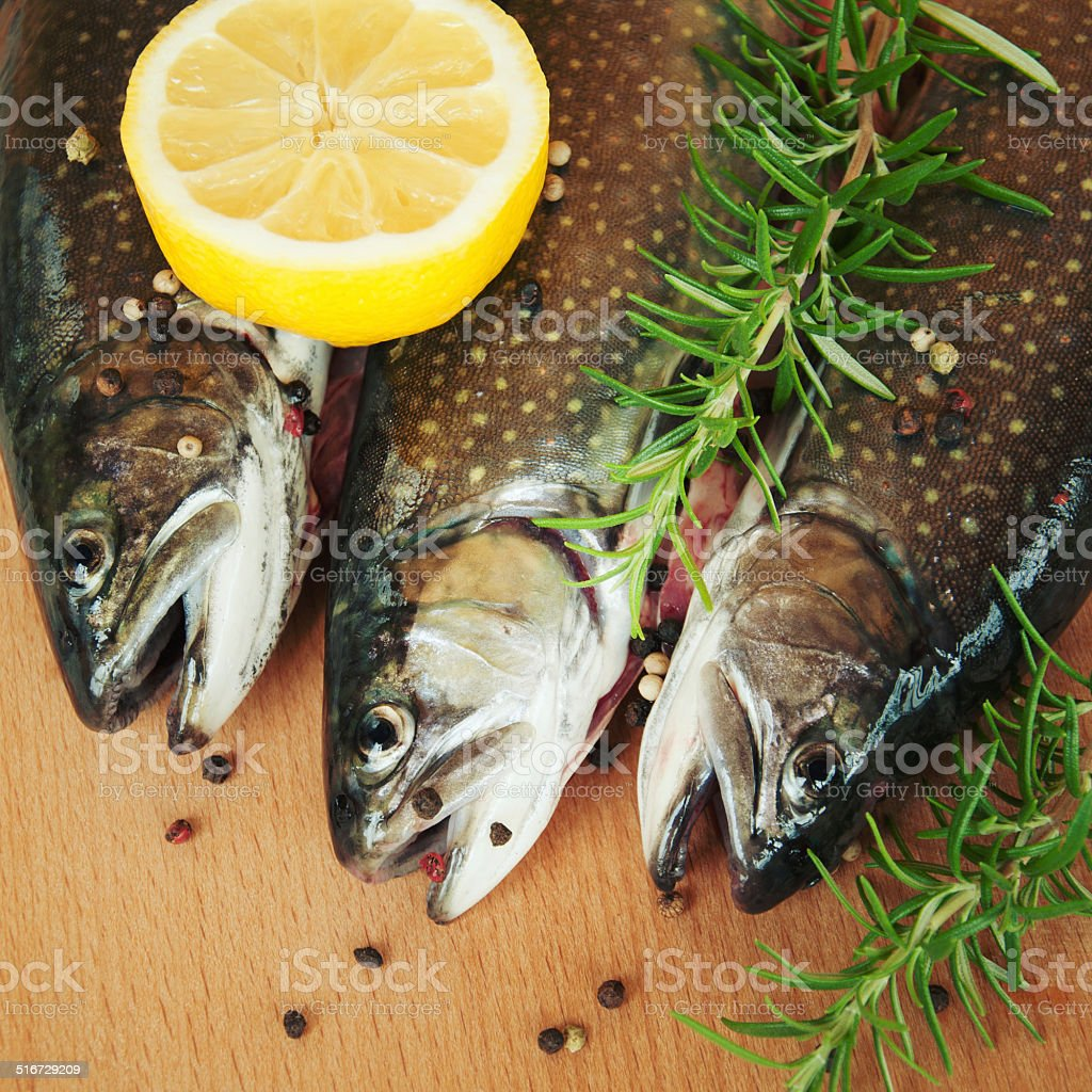 Rainbow trout with fresh herbs. stock photo