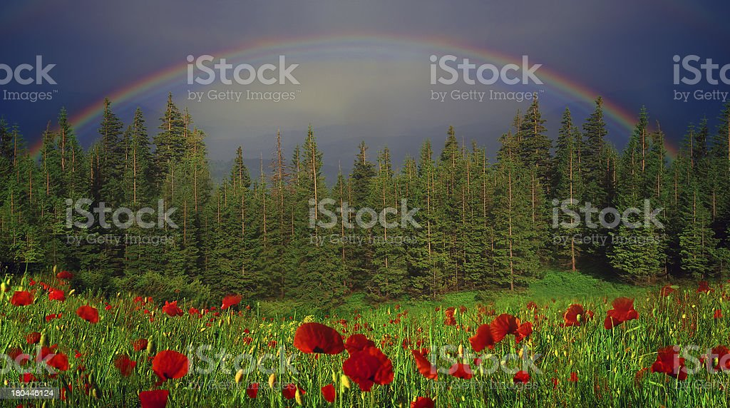 Rainbow-arc royalty-free stock photo