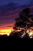 Rainbow-like sunset paints a dramatic summer sky