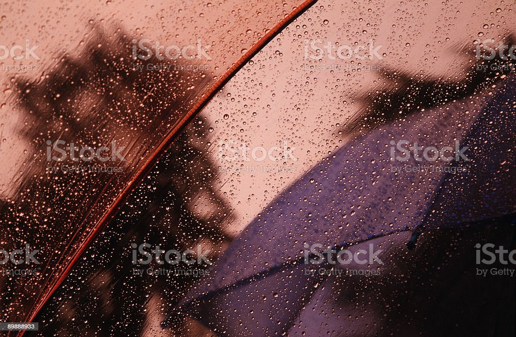 Raindrop Pattern From Under an Umbrella, Curve, Shallow Depth-of-Field royalty-free stock photo