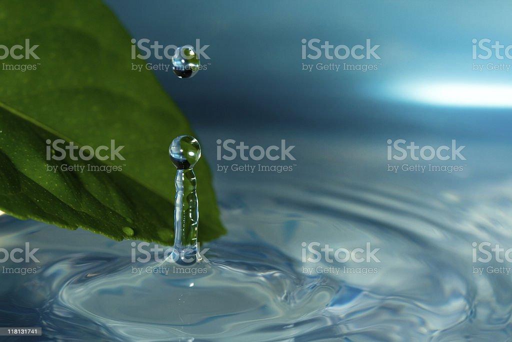 Rain-drop stock photo