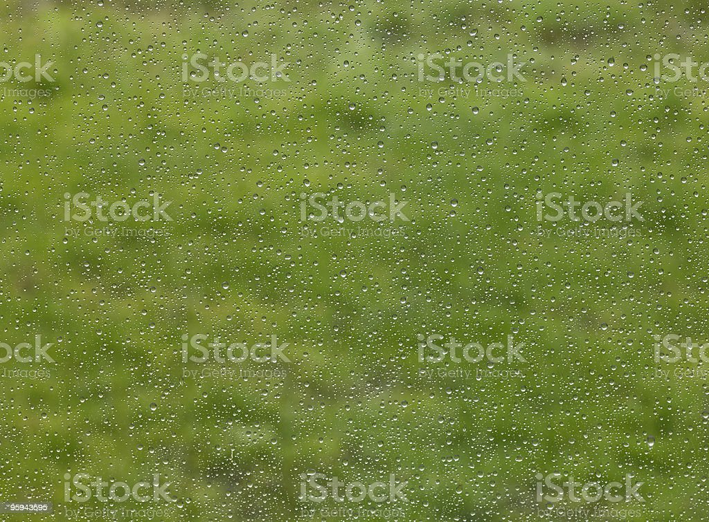 raindrops in green blurry back royalty-free stock photo