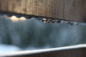 raindrops on a fence