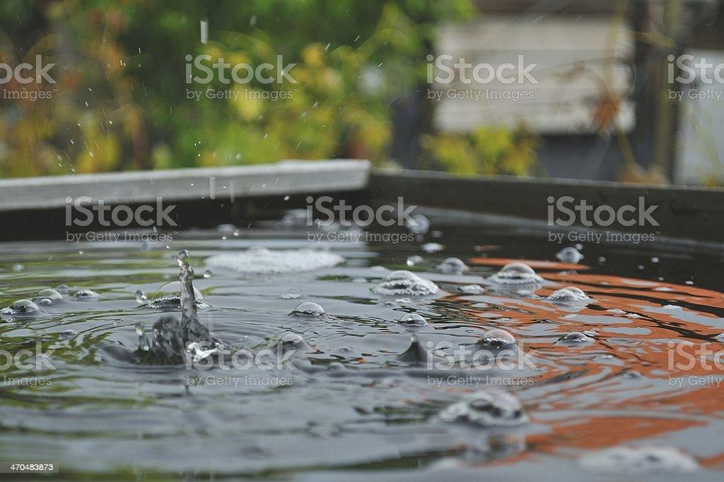 Kroplami deszczu na wodzie zbiór zdjęć royalty-free