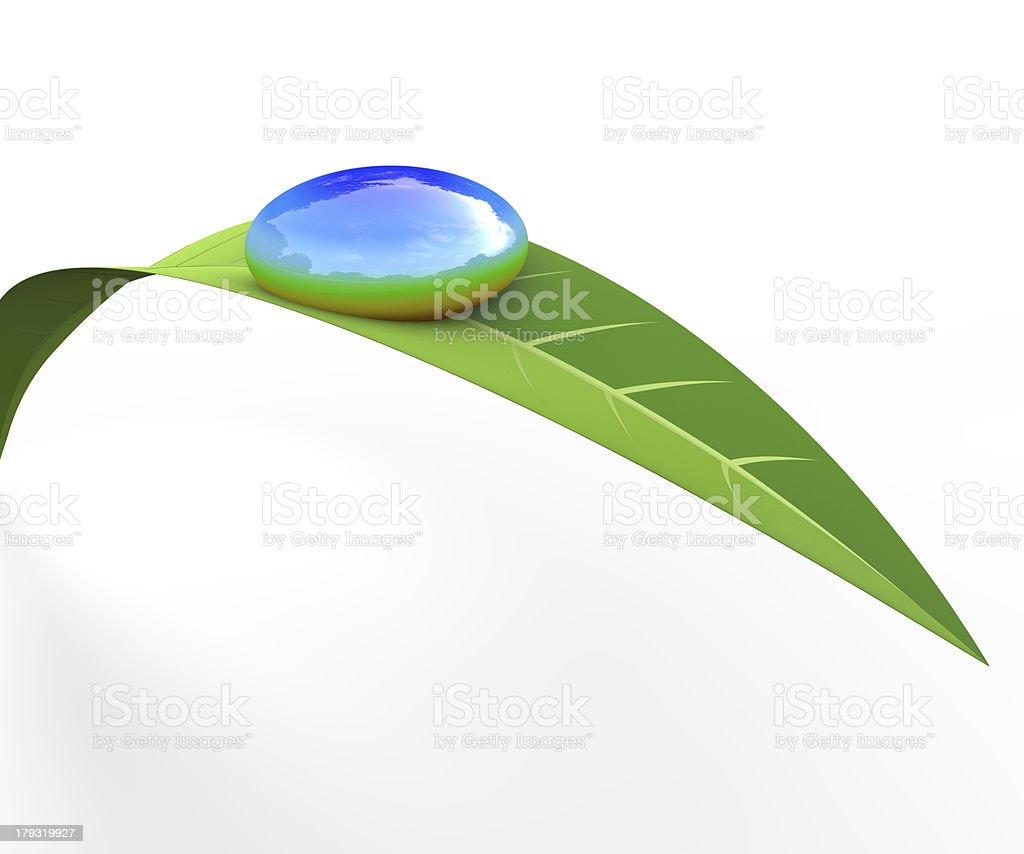 Raindrops/Grass royalty-free stock photo