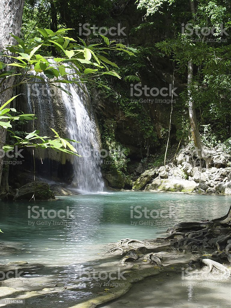 rainforest and waterfall royalty-free stock photo