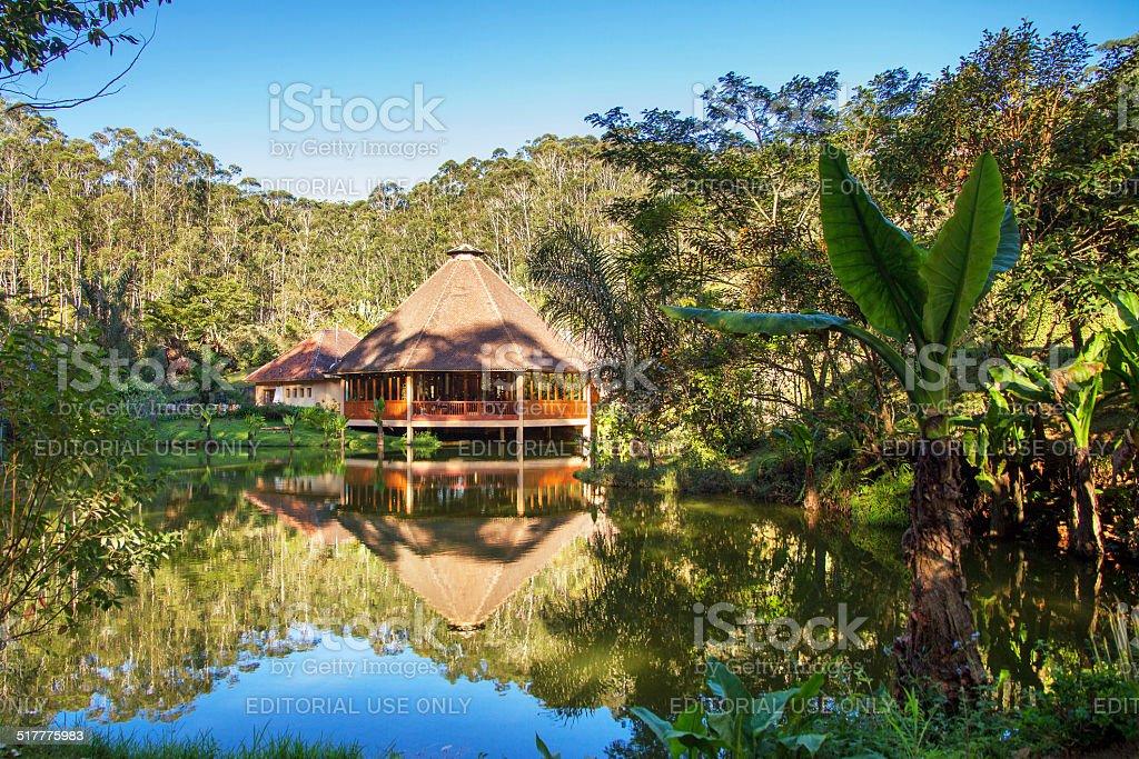 Rainforest cabin stock photo