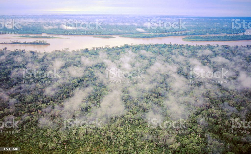Rainforest from the air, Ecuador stock photo