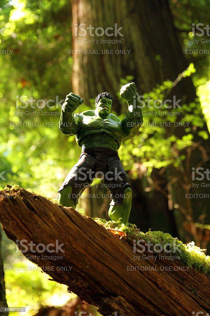 Rainforest Rage stock photo