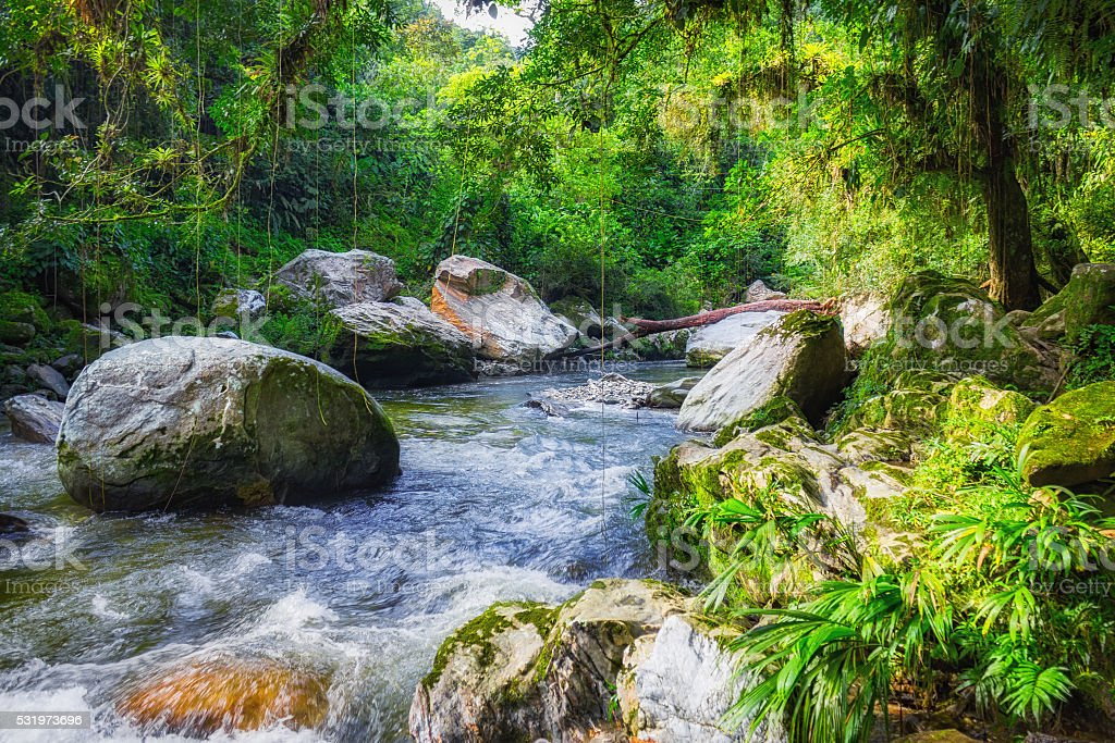 Rainforest River in Sierra Nevada Mountains Colombia near Ciudad Perdida stock photo