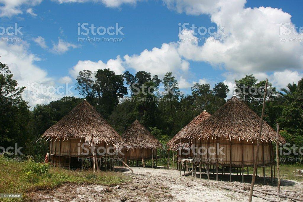 Rainforest Settlement in New Guinea royalty-free stock photo