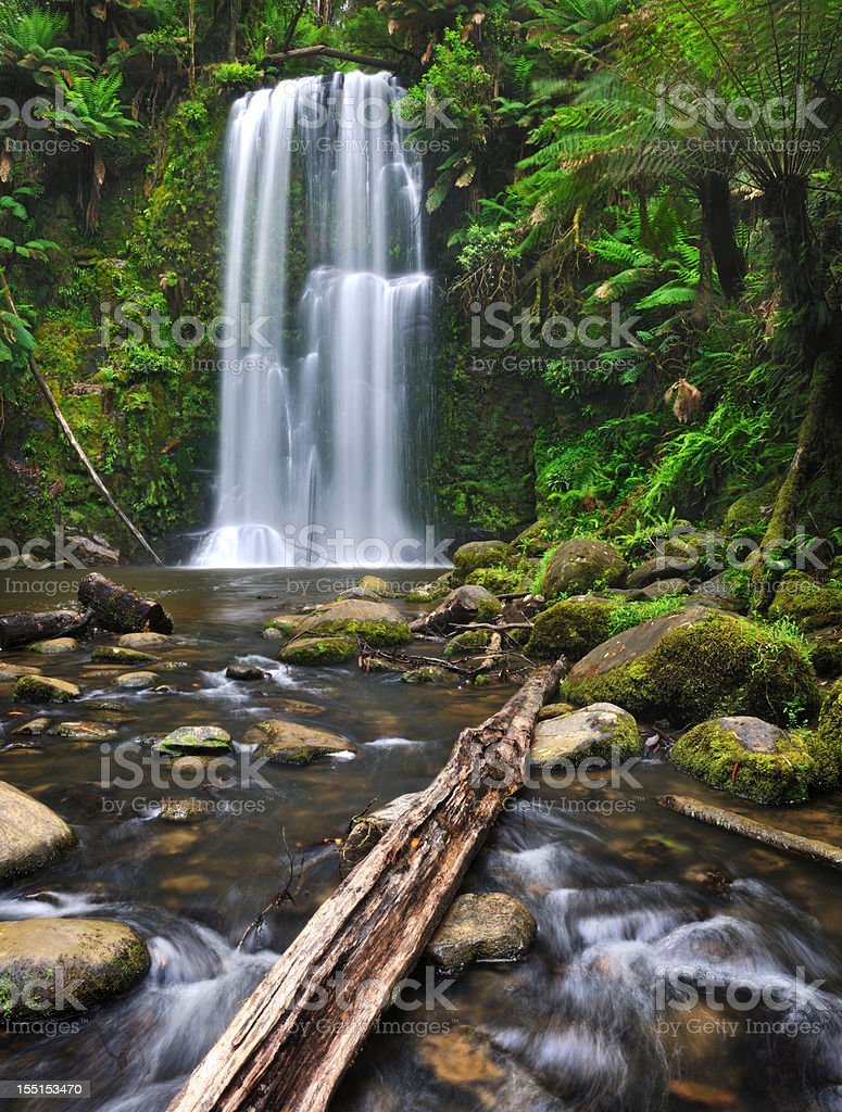Rainforest Waterfall, Beauchamp Falls, Australia (XXXL) stock photo