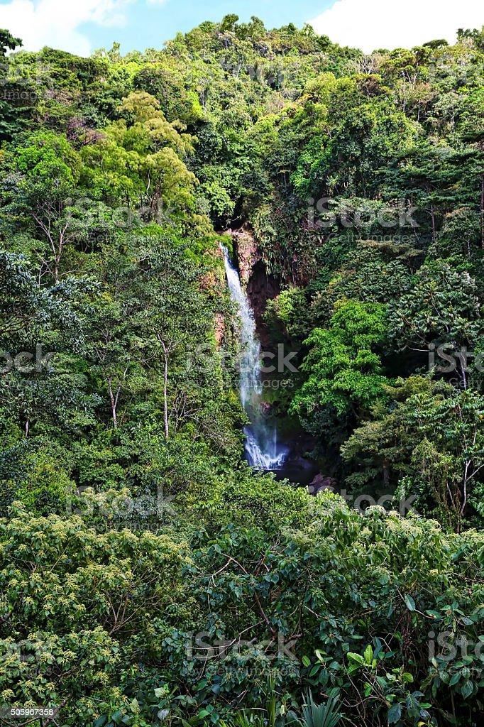 Rainforest Waterfall in Panama stock photo